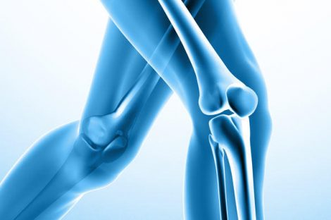 toh_knee-replacement_1